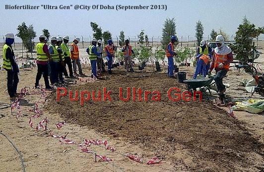 Aplikasi Ultra Gen di Qatar